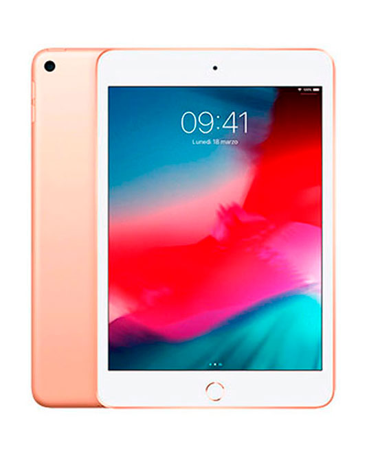 iPad mini 4 - Riparazioni iRiparo